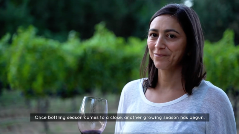 Wine Tasting 101 Video with Clif Family Winery